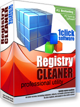 Reg Cleaner